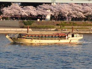 対岸の桜と船