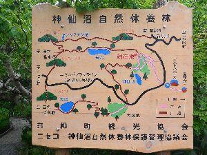 神仙沼自然休養林 案内板
