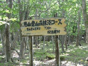 恵山登山森林浴コース