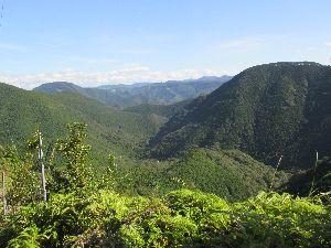 熊野古道からの眺望