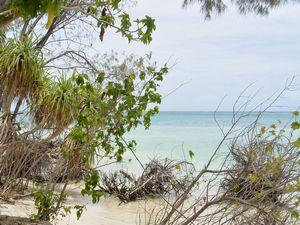 ブラウ島のサンゴ礁の海