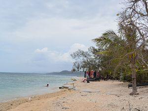 珊瑚礁とシュノーケリング