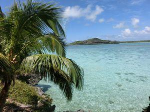 ヤシとファヤワ島
