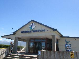 Whale Watch オフィス